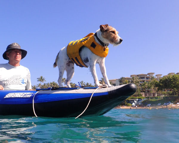 Jim & Bailey - Doggie Deck & Kayak